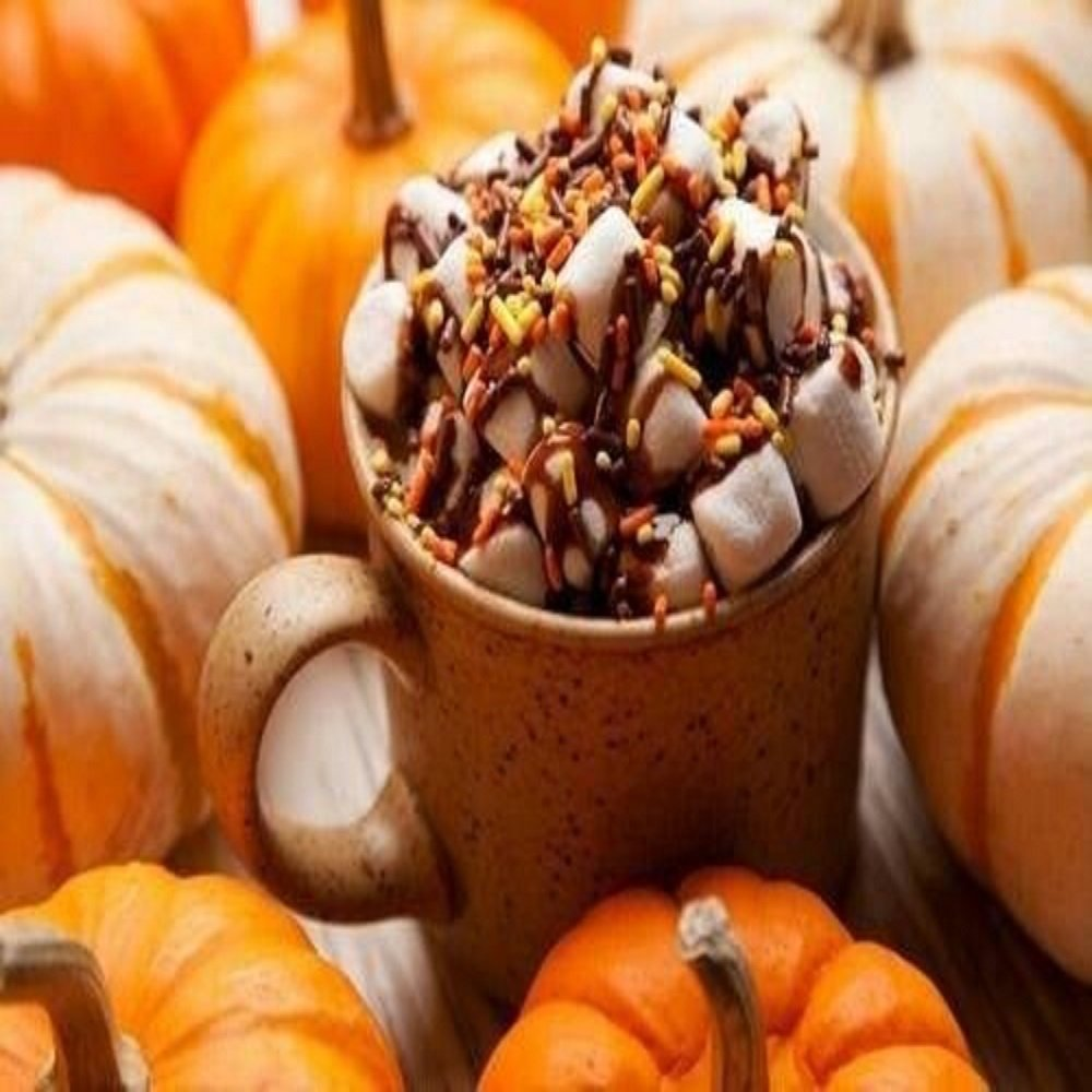 MARSHMALLOW PUMPKIN LATTE FRAGRANCE OIL - 4 OZ - FOR CANDLE & SOAP MAKING BY VIRGINIA CANDLE SUPPLY WITH WITHIN USA