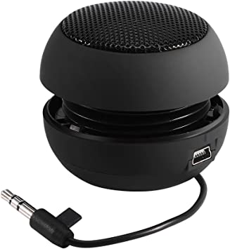 Wireless Speaker, Portable Mini Travel Speaker with 10.10mm Aux Audio Jack  Plug in Clear Bass Built-in Battery for Smart Phone, iPad and  Computer(Black)