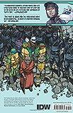 Teenage Mutant Ninja Turtles Volume 13: Vengeance Part 2 (Teenage Mutant Ninja Turtles Ongoing Tp)