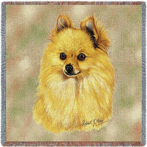 Pure Country 1147-LS Pomeranian Pet Blanket, Canine on Beige Background, 54 by 54-Inch by Pure Country