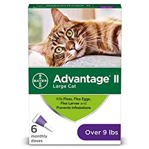 Bayer Advantage II Flea Prevention for Cats, 6 Dose