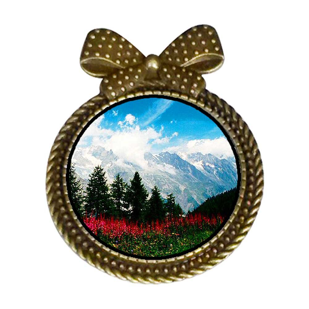 GiftJewelryShop Ancient Style Travel German Alps Round With Bowknot Pin Brooch #9