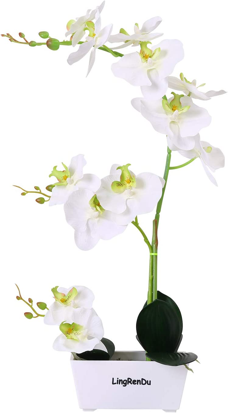 LingRenDu White Fake Orchids Artificial Orchid Flowers,12 Head Trapezoidal Plastic Pot Silk Orchids Plants for Home Decor