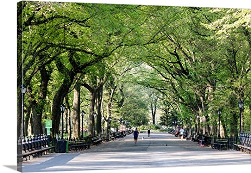 Gallery-Wrapped Canvas entitled The Mall in springtime, Central Park, Manhattan, New York, USA by Great BIG Canvas - Nyc Manhattan Mall