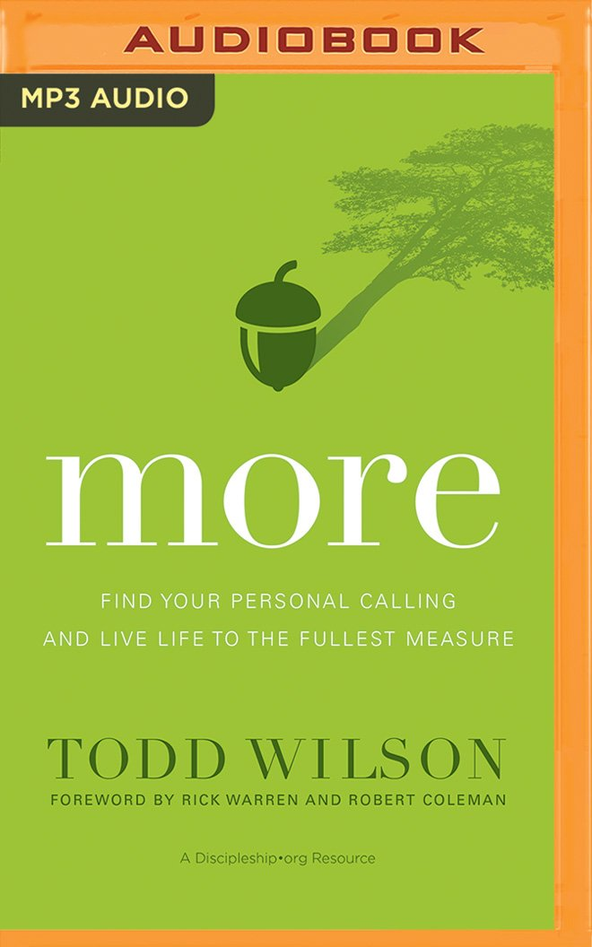 Read Online More: Find Your Personal Calling and Live Life to the Fullest Measure pdf epub