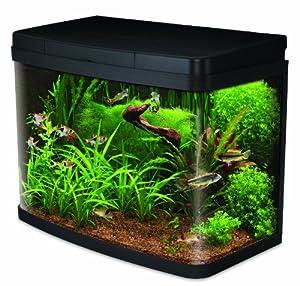 Interpet insight glass aquarium fish tank premium kit 40 for Amazon fish tank