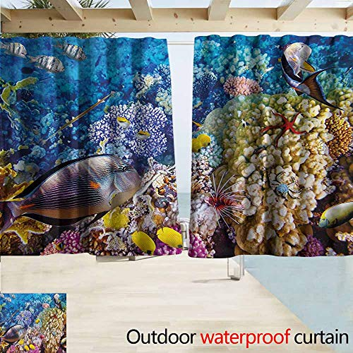- Zmacdk Fish Outdoor Curtain Egyptian Red Sea Bottom View with Marine Creatures Top of Tribal Ocean Scuba Image for Patio/Front Porch W55 xL63 Multicolor