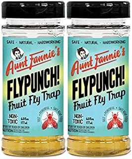 product image for Aunt Fannie's FlyPunch! 6.0 fl oz DiveJars - 2 Pack - Beat Fruit Flies Naturally!