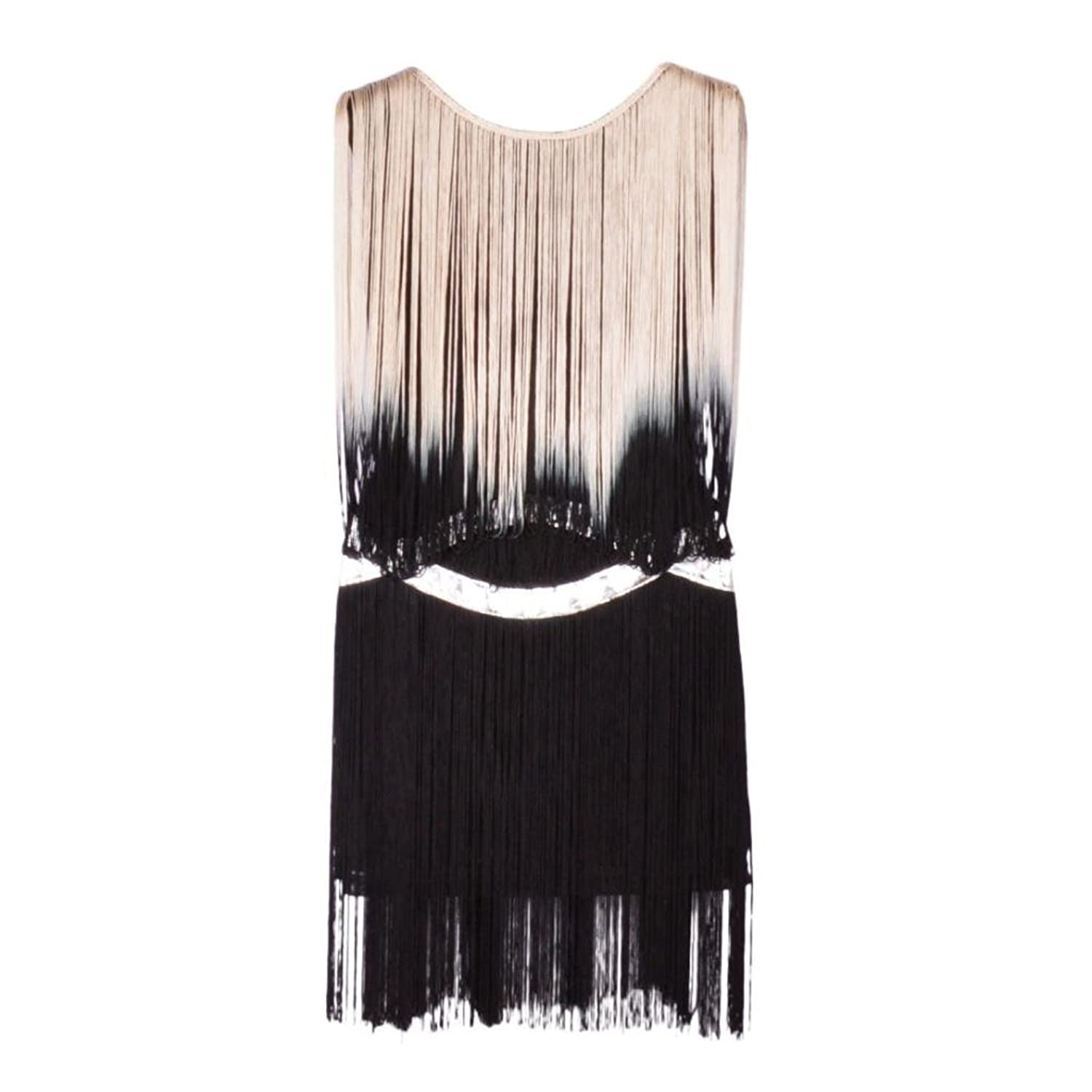 Eyekepper Women's Organza Fringe Silver Trim Drop Waist Dress