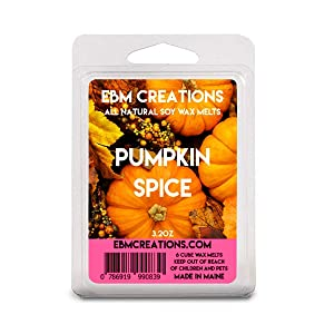 Pumpkin Spice - Scented All Natural Soy Wax Melts - 6 Cube Clamshell 3.2oz Highly Scented!