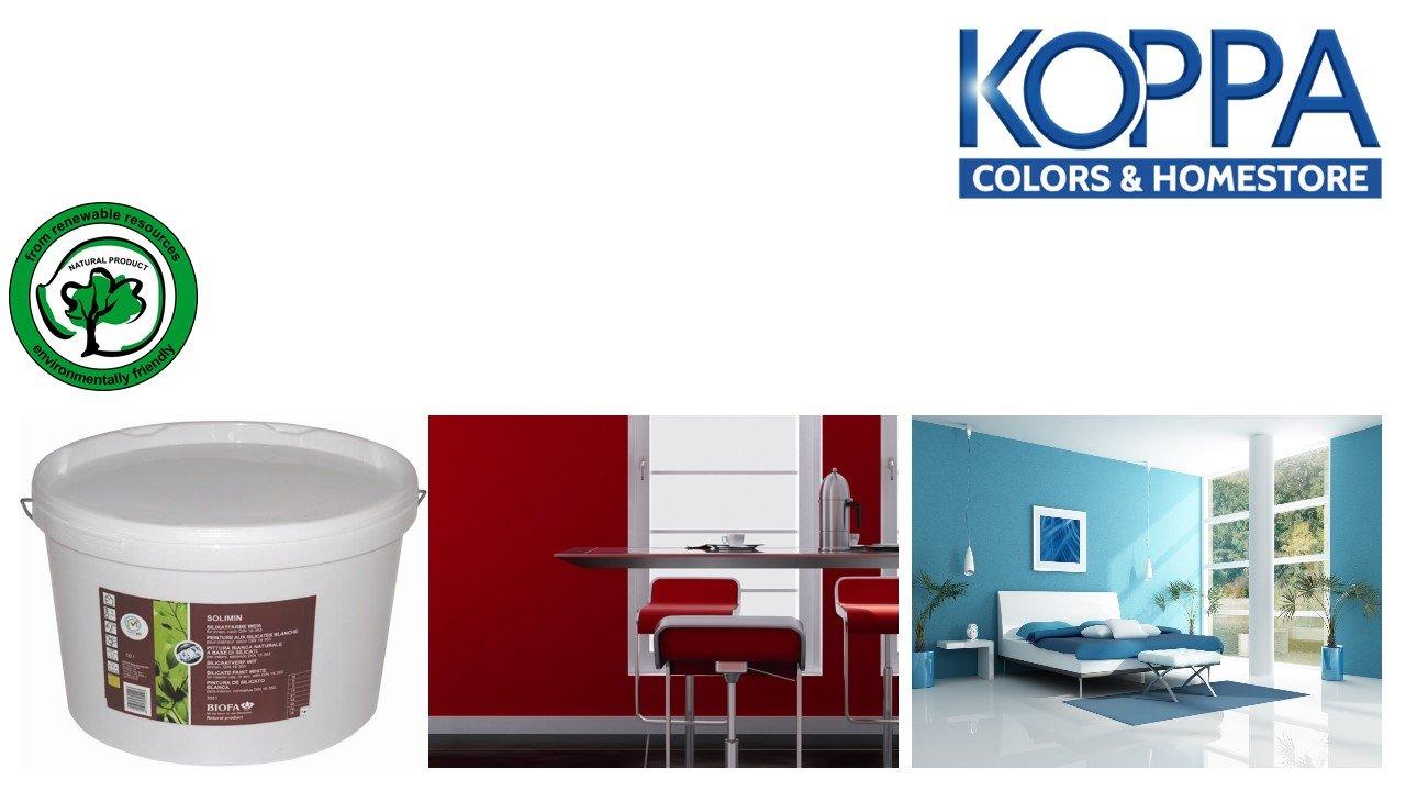 Biofa solimin peinture de silicate Blanc 10L