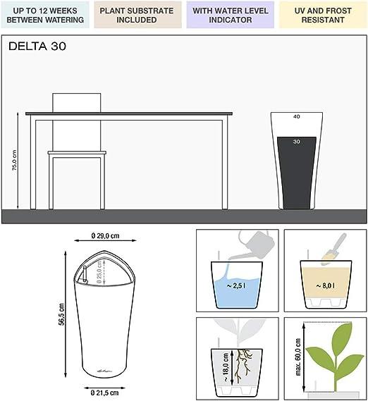 LECHUZA 14903 Deltini Kit Complet Anthracite M/étallis/é,