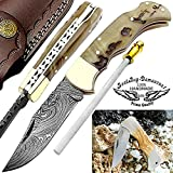 Pocket Knife 6.5'' Ram Horn Damascus Steel Knife Brass Bloster Back Lock Folding Knife +Sharpening Rod Pocket Knives 100% Prime Quality+ Olive Wood Stainless Steel Small Pocket Knife & Damascus Knife