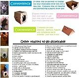 Catsdesire Litter Box (5 Pack)