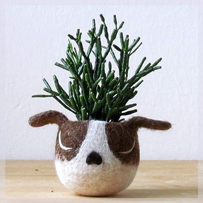 Succulent planter dog | Dog lover gift, Boston terrier planter, Animal planter