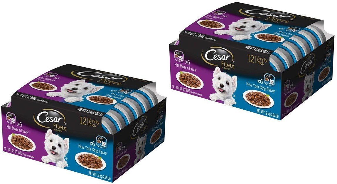Cesar GOURMET FILETS Wet Dog Food Filet Mignon & New York Strip Flavors Variety Pack, (Pack of 24) 3.5 oz. Trays