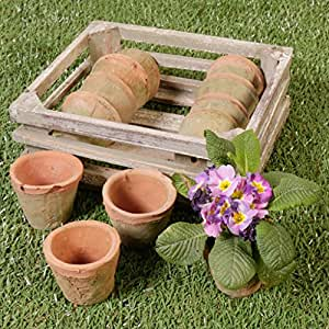 Juego de 12pequeño terracota rústico, con caja de almacenamiento de madera. Perfecto para el cultivo de pequeñas flores, utilizando en invernadero, jardinería de interiores, al aire libre, decoración, Etc. H 11,5x W 29x 25,5cm; Cada olla H 7x W 9,5