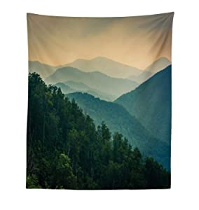 """Ambesonne Appalachian Tapestry, Panoramic Landscape Photo of Mountain Ridges Virginia, Fabric Wall Hanging Decor for Bedroom Living Room Dorm, 23"""" X 28"""", Green Grey"""