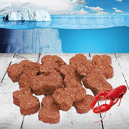 Hummer Snack 100g SNACKFISH sind reine Naturprodukte die ausschließlich aus frisch gefangenem isländischem Fisch hergestellt werden auch Hunde mit Allergien vertragen diesen Snack ganz hervorragend
