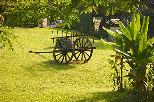 (Domaine de Severin Rum Distillery, and Sugar Cane Cart, Guadaloupe, Caribbean by Walter Bibikow/Danita Delimont Laminated Art Print, 29 x 19 inches)