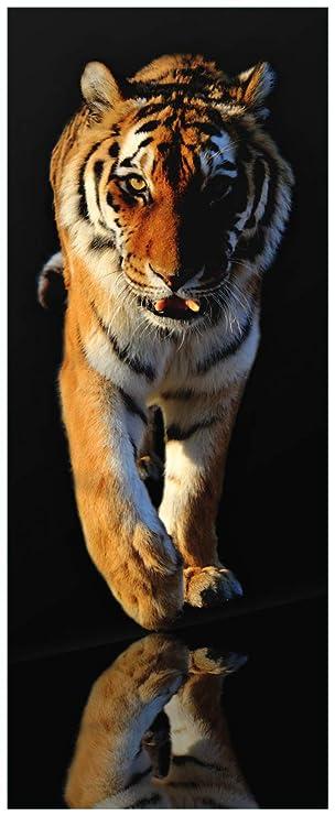 Wallario Glasbild Laufender Tiger 32 X 80 Cm In Premium Qualität