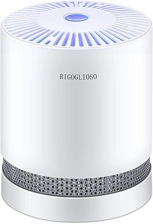 RIGOGLIOSO True HEPA Filtro purificador de aire para ahumadores domésticos, alergias y mascotas de cabello, sistema de filtración de eliminadores, purificadores de escritorio compactos filtración con luz nocturna, limpiador de aire, GL2109: