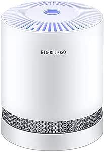 RIGOGLIOSO True HEPA Filtro purificador de aire para ahumadores domésticos, alergias y mascotas de cabello, sistema de filtración de eliminadores, purificadores de ...