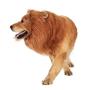 SEALEN Perro Mascota y Disfraces de Gato, Peluca de Melena de León se Visten con