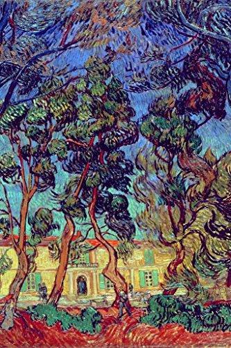 Vincent Van Gogh Trees in The Garden of SaintPaul Hospital Poster 24x36 inch