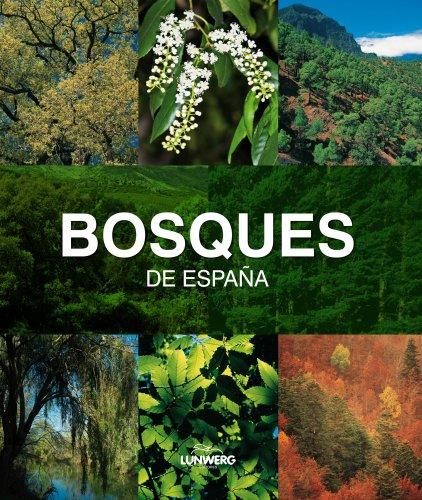 Descargar Libro Bosques De España. Lunwerg Medium Joaquín Araújo