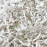 Black Cat Avenue 1 LB White & Iridescent Crinkle Cut Paper Shred Filler For Gift Wrap and Basket Filler