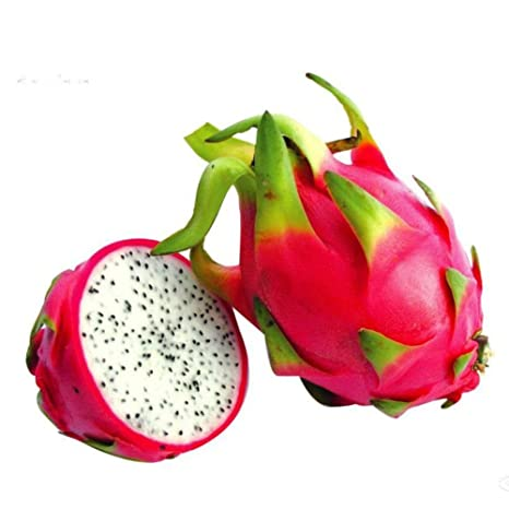 ef7d6b8973822 KAYI Mix Pitaya Dragon Fruit Four Seasons Semillas Balcón Potted Novely  Seeds Home Planting Red Skin