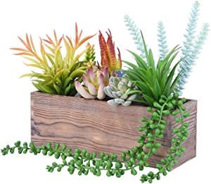 Wood Planter Box Rectangle, Rustic Window Flower Box with 3 Removable Compartments, for Succulent and Floral Arrangements (Succulent Plants Not Included)