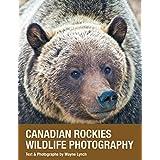 Canadian Rockies Wildlife Photography
