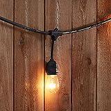 AmazonBasics Weatherproof Outdoor Patio String Lights S14 Bulb, Black, 48'