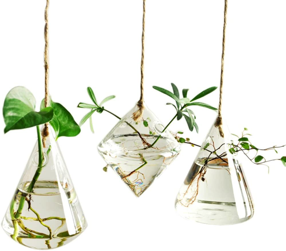 Ivolador Terrarium Container Flower Planter Hanging Glass for Hydroponic Plants Home Garden Decor -3 Type : Garden & Outdoor