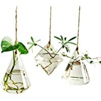 Ivolador Terrarium Container Flower Planter Hanging Glass Home Garden Decor -3 Types