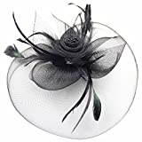 Mwfus Women Feather Fascinator Top Hat Wedding Cocktail Church Veil Headpiece Headwear