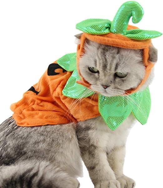 POPETPOP Disfraz de Gato de Halloween Trajes Trajes de Sombreros Vestido Diademas Festivales Trajes de Calabaza para Perros Gatos: Amazon.es: Productos para mascotas