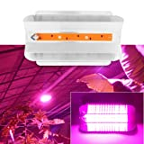LED Grow Light for Indoor Plan,220V 30W 50W 80W