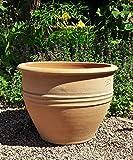 """'terracotta vaso per piante """"Veronica, handgefertig e resistente al gelo, ideale per il giardino esterno bepflanzen"""