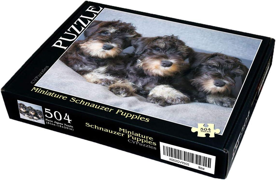 """CVPuzzles Miniature Schnauzer Puppies 504 Piece Jigsaw Puzzle 16/"""" X 20/"""""""