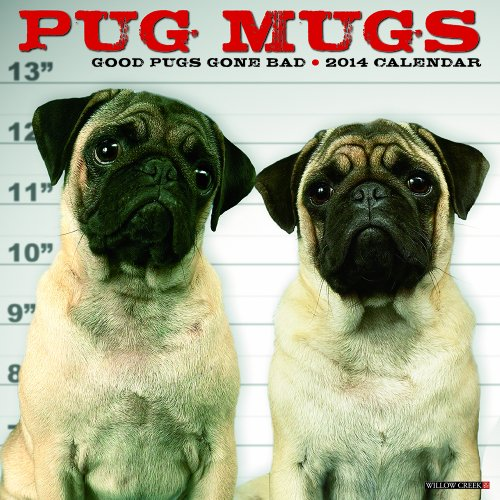 Dog 2014 Mini Calendar - Pug Mugs 2014 Mini Calendar