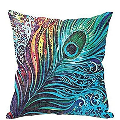 FairyTeller Decorative Pillows Cushions Home Decor Feather Sofa Bed Cushion Case Decorative Covers Quality First