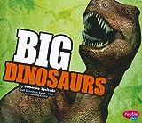 BIG Dinosaurs, Catherine Ipcizade, 1429639954
