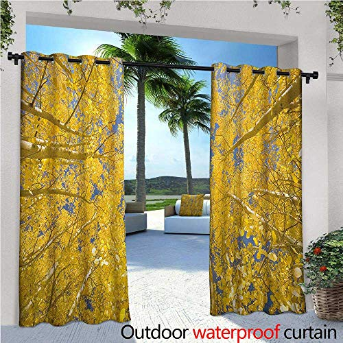 Yellow and Blue Outdoor Privacy Curtain for Pergola Looking Skyward Amongst The Patch of Sun-lit Aspen Trees in Autumn Life Print Thermal Insulated Water Repellent Drape for Balcony W108 x L108 YEL