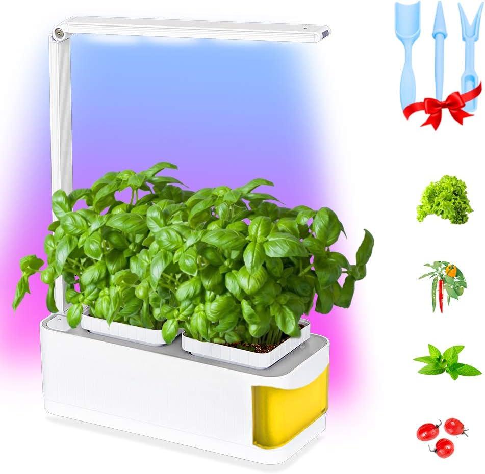 Smart Indoor Garden Kit,Led Desktop Growing Light,Herb Garden Hydroponics Growing System Ideal Xmas Birthday for Kids Mom Friends - Smart Window Garden Fresh Herbs Salad Greens Basil (Yellow)