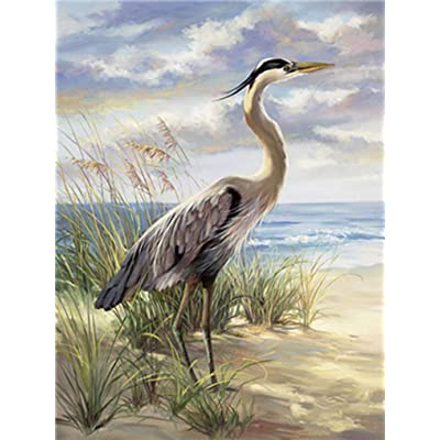 LoveTheFamily Beach and Great Blue Herons Paint by Numbers Kits DIY Digital Painting Coloring On Canvas Oil Painting by Yourself Handmade (Frameless, 16x20-inch): Toys & Games