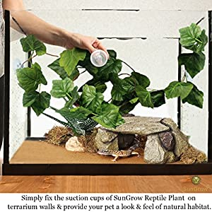 SunGrow Natural Looking Reptile Plants - Vibrant Green Terrarium Plastic Plants 6.5ft Easy to Clean Silk Leaves - Creates Natural Hiding Spot for Reptiles and Amphibians - Suction Cups Included 7