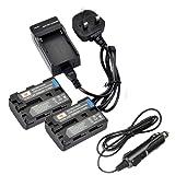 DSTE® 2pcs NP-FM50 Rechargeable Li-ion Battery + Charger DC01U for Sony NP-FM30, NP-FM50, NP-FM51, NP-QM50, NP-QM51, NP-FM55H and Sony CCD-TR108, CCD-TR208, CCD-TR408, CCD-TR748, CCD-TRV106, CCD-TRV107, CCD-TRV108, CCD-TRV116, CCD-TRV118, CCD-TRV126, CCD-TRV128, CCD- CCD-TRV138, CCD-TRV208, CCD-TRV218, CCD-TRV228, CCD-TRV238, CCD-TRV308, CCD-TRV318, CCD-TRV328, CCD-TRV338 , CCD-TRV408, CCD-TRV418, CCD-TRV428, CCD-TRV438, CCD-TRV608, CCD-TRV730, CCD-TRV740, CCD-TRV96K, DCR-DVD100, DCR-DVD101, DCR-DVD200, DCR-DVD201, DCR-DVD300, DCR-DVD301, DCR-DVD91, DCR-HC1, DCR-HC14, DCR-HC15, DCR-HC88, DCR-PC6, DCR-PC8, DCR-PC9, DCR-PC100, DCR-PC101, DCR-PC103, DCR-PC104, DCR-PC105, DCR-PC110, DCR-PC115 etc...